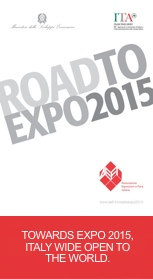 road to expo 2015 - aefi